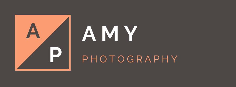 Amy logo text Left